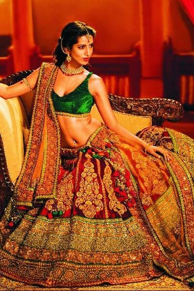 Overwhelming Multi Colored Velvet Choli Designer Bridal
