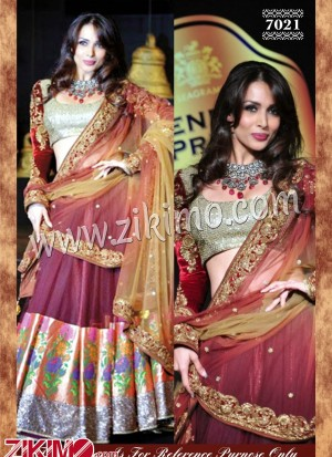 Malaika Arora Brown Net lehenga with heavy work Dupatta